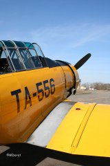 AT-6_D-FITE_19-03-2010_32.jpg