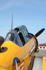 AT-6_D-FITE_19-03-2010_34.jpg