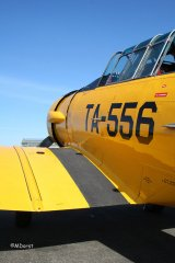 AT-6_D-FITE_19-03-2010_39.jpg