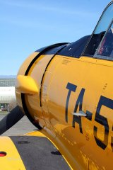 AT-6_D-FITE_19-03-2010_40.jpg