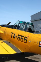 AT-6_D-FITE_19-03-2010_46.jpg