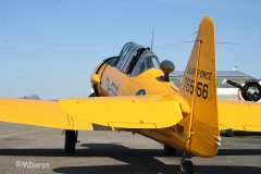 AT-6_D-FITE_19-03-2010_50.jpg