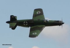 Dornier_Do335_Engel_11.jpg