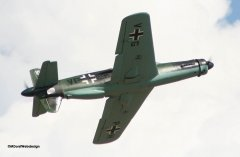 Dornier_Do335_Engel_5.jpg